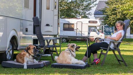 Wohnmobil Knigge, Campingplatz