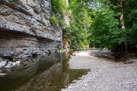 Wutachschlucht, Camping mit Hund, Schwarzwald, Wandern mit Hund