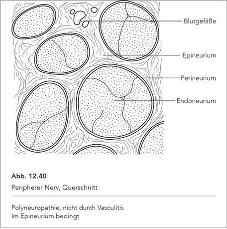 Abb. 12.40