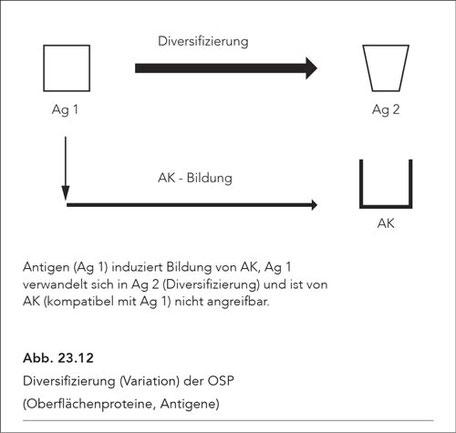 Abb. 23.12