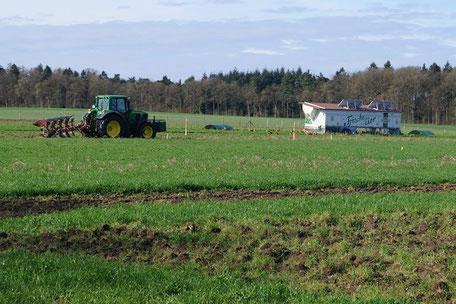 Der Hühnerwald: Agroforstsystem Nr. 1 auf dem Hof Hartmann in Rettmer