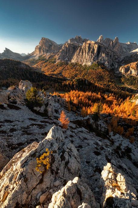 Autumn colour explosion at Passo Falzarego in the Italian Dolomites