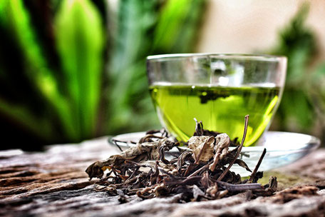 Radiant Reality Blog | 5 Ways to Detox your Brain for Radiant Health | L-theanine - Green Tea