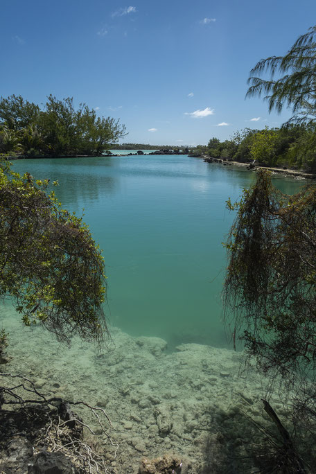 incontournable polynesie