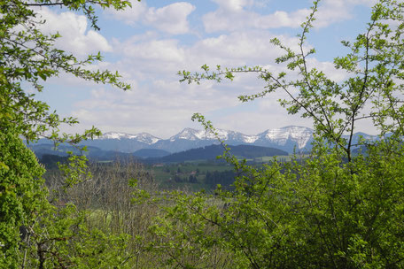 Freie Trauung mit Trauredner im Allgäu