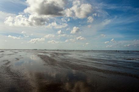 Watterkundungen in Cuxhaven