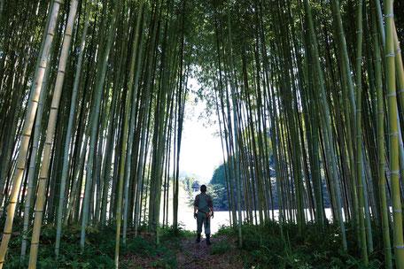 竹の鞄ができるまで