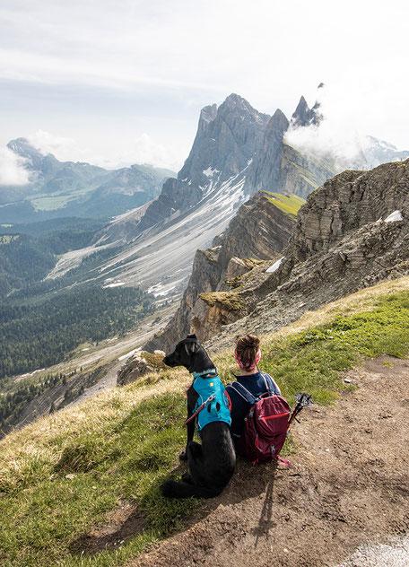 Wandern mit Hund in Südtirol Seceda
