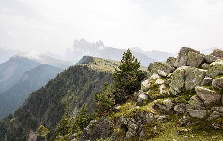 Bergurlaub mit Hund, Wandern mit Hund, Raschötz, Wandern in den Dolomiten