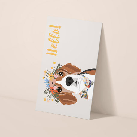 Packaging Design Grafikdesign Hunde Hundebedarf