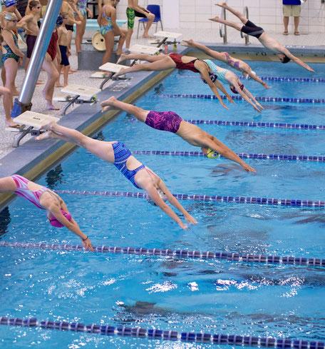 plongeon dans la piscine en séjour linguistique, cours de natation, summer camp