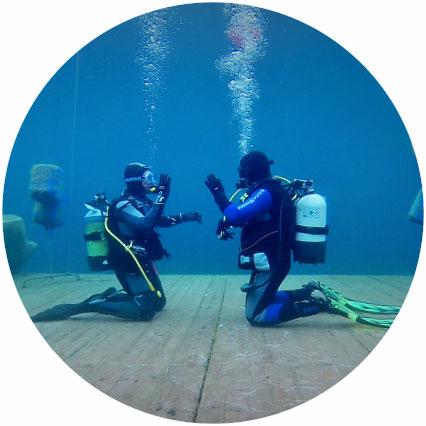 open water diver dein weltweil anerkannter tauchschein