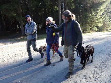 Drei Personen gehen mit zwei anständigen Hunden auf einem Weg