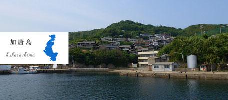 からつ七つの島 島留学 加唐島 かからしま