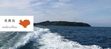 からつ七つの島 島留学 馬渡島 まだらしま
