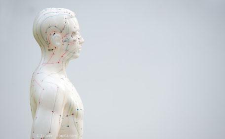 Akupunktur beim Zahnarzt Michael Riedel München
