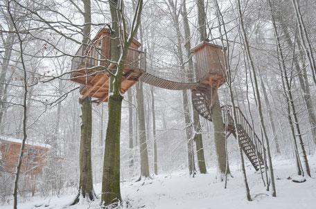 Baumhaus Baumtraum, Winter, Baumhaushotel Solling