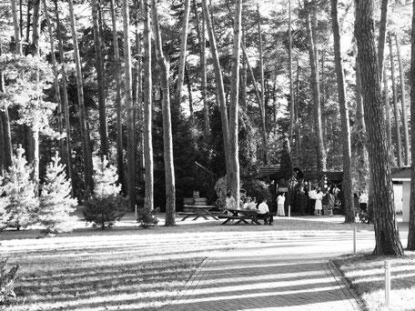 #весільний #фотограф #свадебный #черновцы #львів #чернівці #сторожинець #лавсторі #лучший #свадебный #фотограф #фотографии #Черновцов #Львова  #кращий #весільний #фотографи #фотографії #в #Чернівцях  #Львові #best  #photos #photographers #Top10 #HTML
