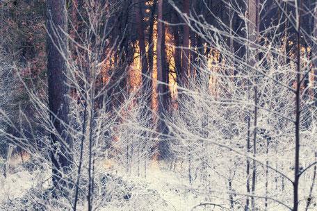 Winterwonderland Serie | www.visovvio.de | Eiswelt,  Märchenwelt, never stop exploring