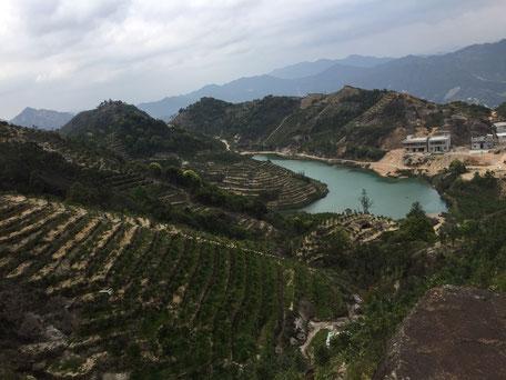 Montagnes de thés, Chaozhou