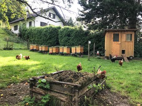 Imkerei Heinrich - Bienenstand Hornungstal