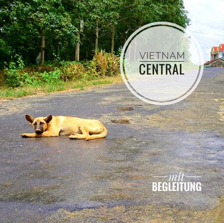 Hochland-Vietnam-Zentralvietnam-entdecken-erleben-bereisen-abseits-vom-Tourismus