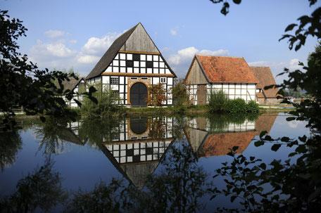 Der Dorfteich im LWL-Freilichtmuseum Detmold.                                                                                           Foto: LWL-Freilichtmuseum Detmold/Sandra Sánchez