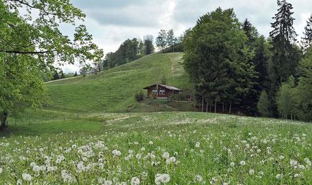 Foto: Willisau Tourismus