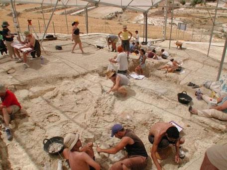 Excursión a yacimiento paleontológico de Orce