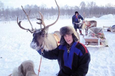 Lappland entdecken – ob mit dem Rentier- oder mit dem Hundschlitten