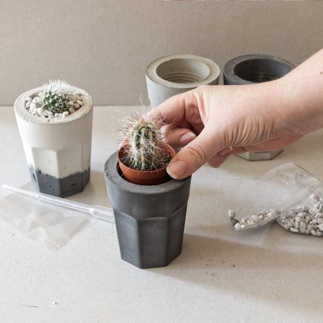 Concrete Cactus Planter Kit By PASiNGA Design