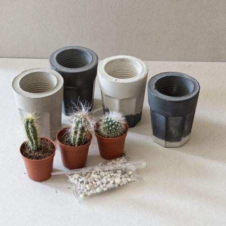 Concrete Coffee Glass Planter PASiNGA Cactus Gift Set