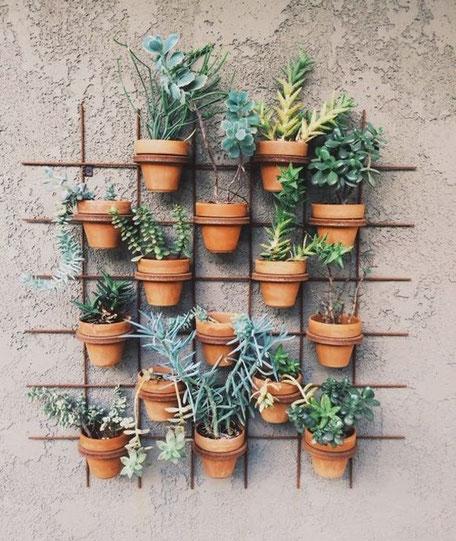 Pops Of Green, indoor jungle display PASiNGA Blog