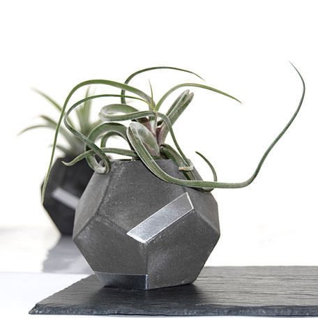 Concrete Silver Dodecahedron Air Plant Holder by PASiNGA