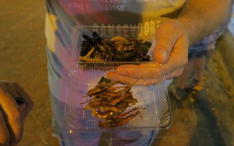 Insekten essen Bangkok