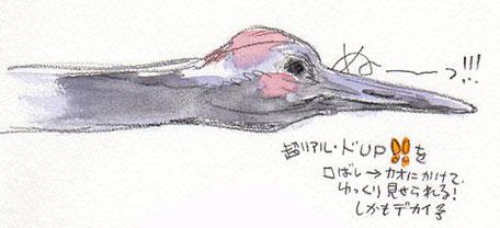 夢スケッチ:紫色の鶴の顔