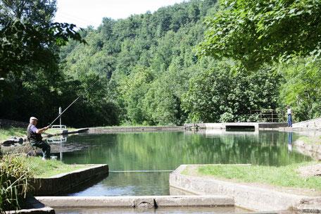 Pêche aux Piscines de Dourgne en Montagne Noire, Sarda, que faire à Puylaurens, que faire à Dourgne
