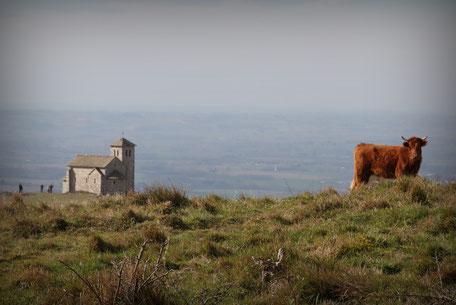 Tarn Tourisme, La chapelle de la Capelette de Dourgne sur le Désert de Saint-Ferréol, randonnée