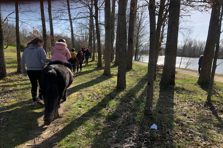 Balade à cheval en Pays de Cocagne, École d'équitation du Dicosa, Terres d'Autan-Montagne Noire, Office de Tourisme, campagne lauragaise, Dicosa, base de loisirs des étangs à Saïx,  que faire à Puylaurens, que faire à Dourgne, monter à cheval Castres