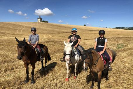 Balade à cheval en Pays de Cocagne, Club Équestre Saint-Germain des Près, Terres d'Autan, Office de Tourisme Puylaurens et Dourgne, campagne lauragaise