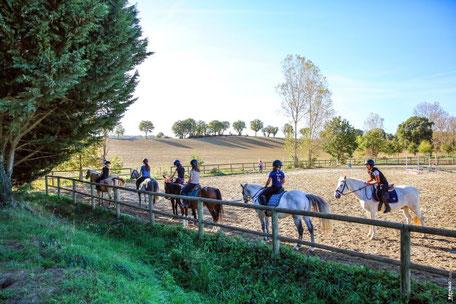 Balade à cheval en Pays de Cocagne, randonnée équestre, Écuries d'En Cazettes, Terres d'Autan, Office de Tourisme, campagne lauragaise, que faire à Puylaurens, que faire à Dourgne