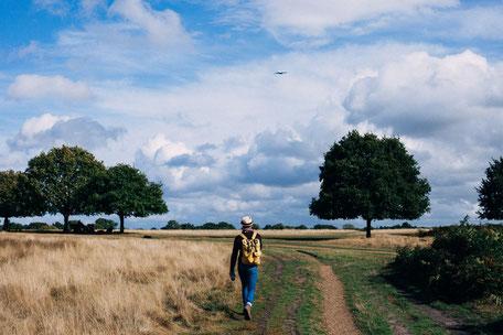 Randonnée Semalens, champs, forêts, Puylaurens, Pays de Cocagne, vent d'autan, que faire à Semalens, randonnées à 1h de Toulouse, visorando