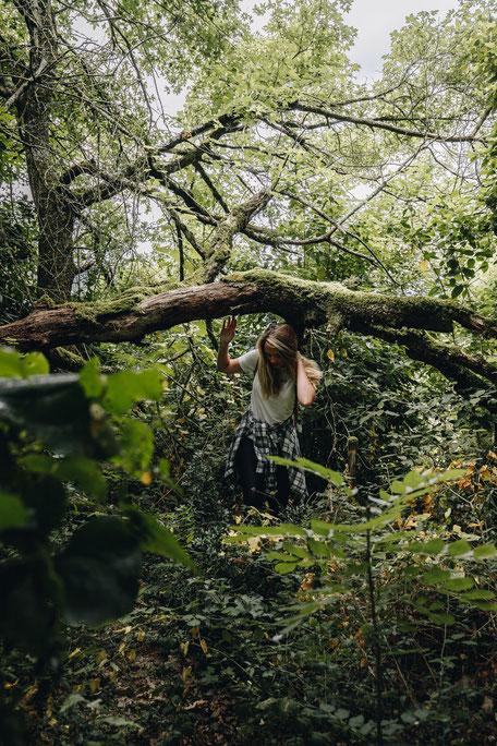 Tarn Tourisme, Balade en forêt à Escoussens en Montagne Noire, Tarn Tourisme, que faire à Puylaurens, que faire à Dourgne
