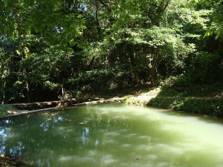 Pique-nique aux Bassins de Dourgne en Montagne Noire