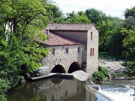 Cambounet-sur-le-Sor en Pays de Cocagne, Réserve Naturelle Régionale de Cambounet, Réserve ornithologique, Château des Plantes, Pastel, Pays de Cocagne