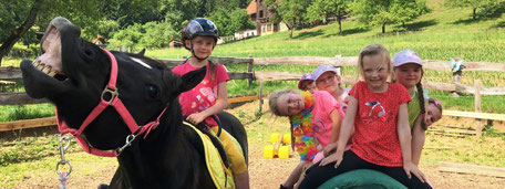 Ponykerstin Reitpädagogik in Kleingruppen