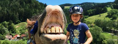 Ponykerstin Reitpädagogik mit Herz und Hirn