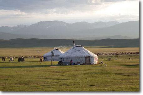 nomadic life mongolia