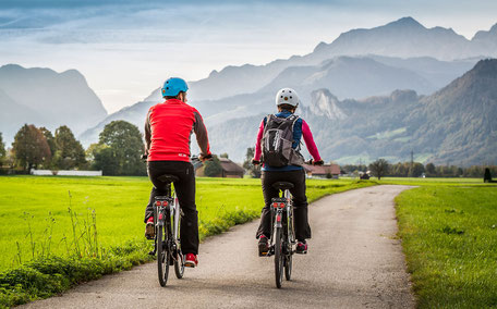 Xion e-Bike Antrieb