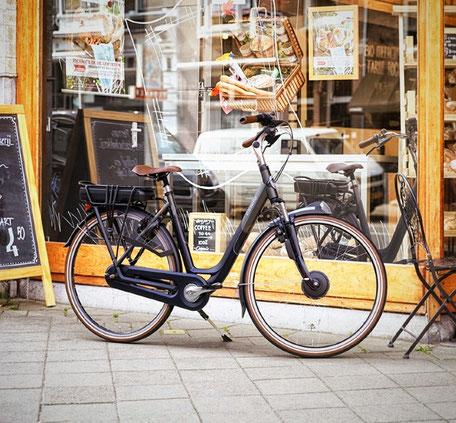 Gazelle e-Bike Frontantrieb Panasonic